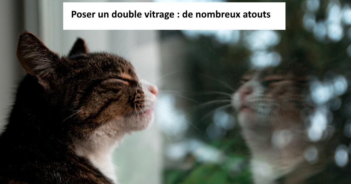 poser un double vitrage